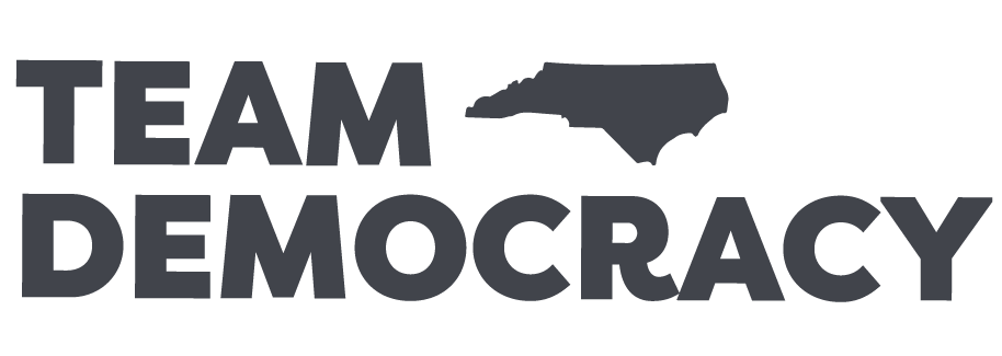 Team Democracy Logo
